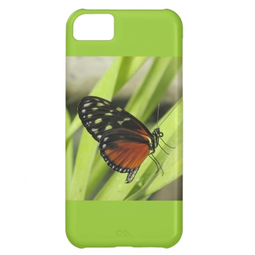 Orange and Black Butterfly on Leaf iPhone 5 Case