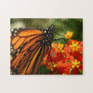Orange and Black Monarch Butterfly Puzzles