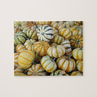 Orange and Green Autumn Harvest Gourds Jigsaw Puzzle