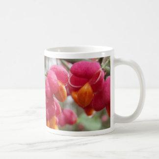 Orange and Pink Wahoo Bush Berries Classic White Coffee Mug