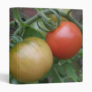 Orange and Red Tomatoes Photograph Album Vinyl Binders