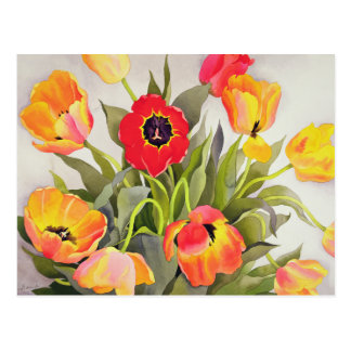 Orange and Red Tulips Postcard