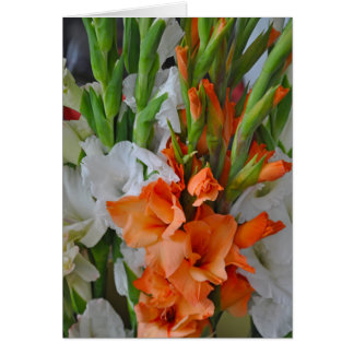 Orange and white gladiola flowers card