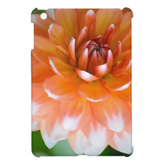 Orange and White Glory iPad Mini Cases