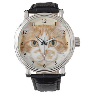 Orange and white tabby face watch