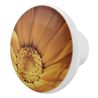 Orange and Yellow Daisy Ceramic Knob