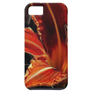 Orange and Yellow Flower on black background iPhone 5 Case