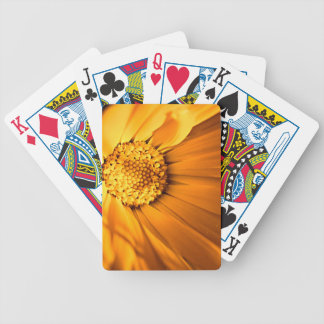 Orange and yellow gerbera daisy bicycle playing cards
