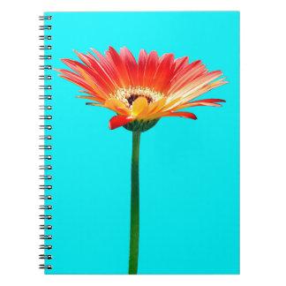 Orange and Yellow Gerbera Daisy Spiral Note Books