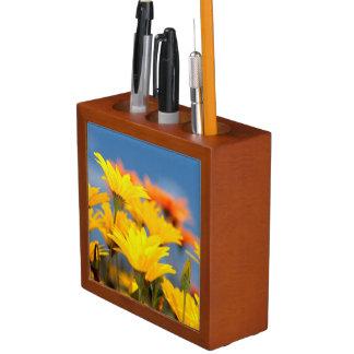 Orange And Yellow Namaqualand Daisies Desk Organizer