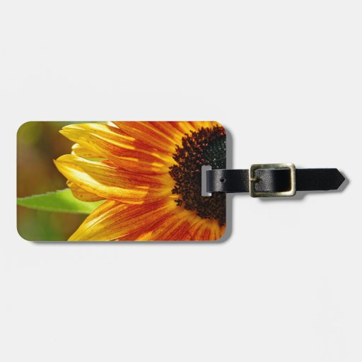 Orange and yellow sunflower blossoms bag tags