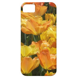 Orange and Yellow Tulips iPhone 5 Case