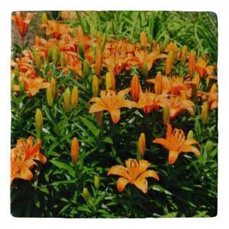 Orange Asian Lillies Trivet