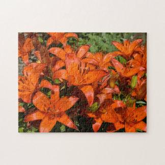 Orange Asiatic Lily 'Brunello' (Lilium) - Flowers Jigsaw Puzzle