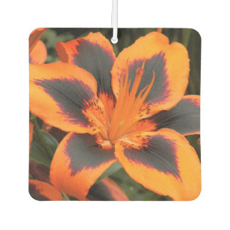 Orange Asiatic Lily Floral Air Freshener