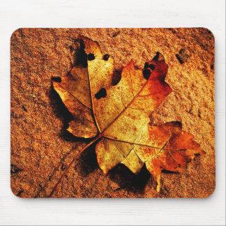 Orange Autumn Leaf Mousepad