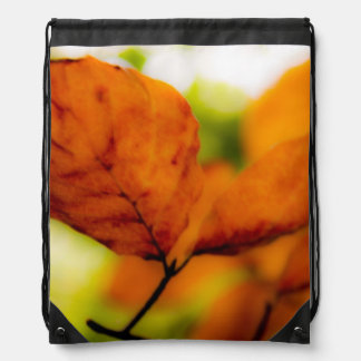 Orange autumn leaves drawstring bag