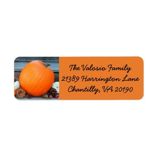 Orange Autumn Pumpkin