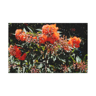 Orange Banksia And Gum Nuts Water Colour Art, Canvas Print