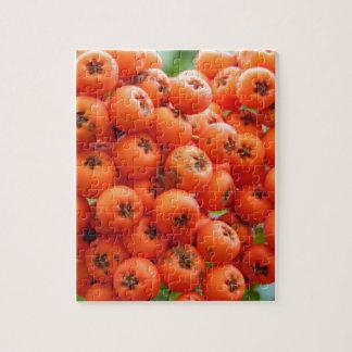 Orange Berries Jigsaw Puzzle