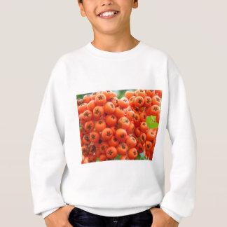 Orange Berries Sweatshirt