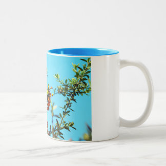 orange berry Two-Tone coffee mug