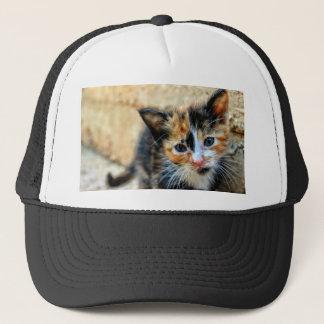 Orange Black and White Kitten Trucker Hat