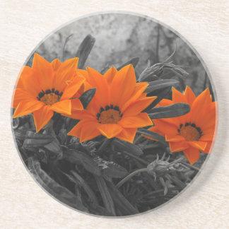 Orange & Black Flower Floral Photography Design Beverage Coasters