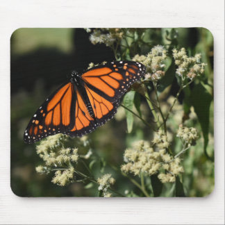 Orange Black Monarch Butterfly Nature Photography Mouse Pad