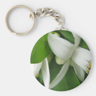 Orange Blossom Basic Round Button Keychain