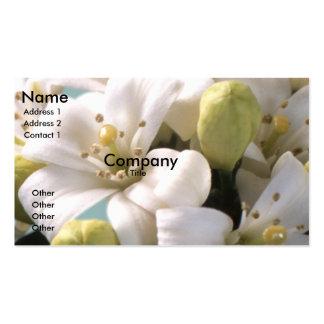 Orange Blossom Pack Of Standard Business Cards
