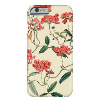 Orange Blossom Barely There iPhone 6 Case