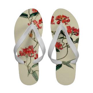 Orange Blossom Sandals