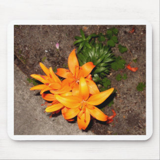 Orange Blossom Keepsake Collection Mouse Pad