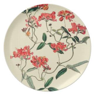 Orange Blossom Party Plate