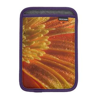 Orange Blossom with colorful petals iPad Mini Sleeve