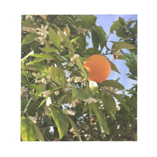 Orange blossoms notepad