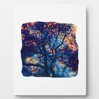 Orange Blue Oak Tree Abstract Branch Plaque