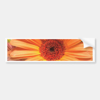 Orange Bouquet Flower Bumper Sticker