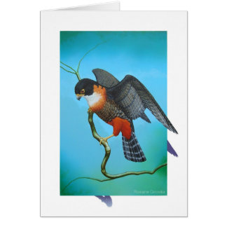 Orange-breasted Falcon Card