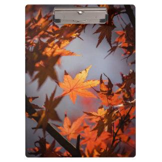 Orange brown fall photo image template clipboard