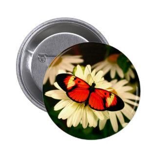 Orange Butterfly 2 Inch Round Button