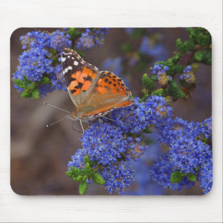 Orange Butterfly On Blue Flower Mouse Pad