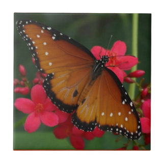 Orange Butterfly tile