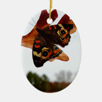 orange Butterfly  with blue spots Ceramic Oval Ornament