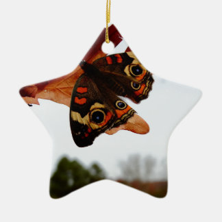 orange Butterfly  with blue spots Ceramic Star Ornament