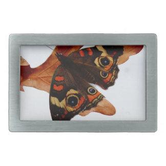 orange Butterfly  with blue spots Rectangular Belt Buckle