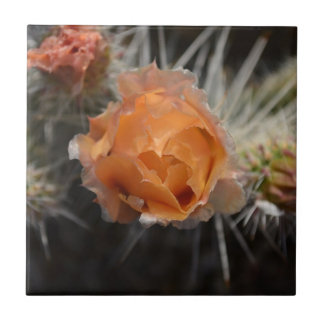 Orange Cactus Blossom Ceramic Tile