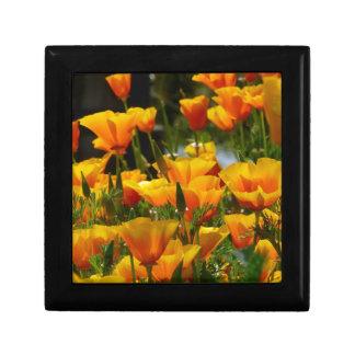 Orange California Poppies_3.1 Gift Box