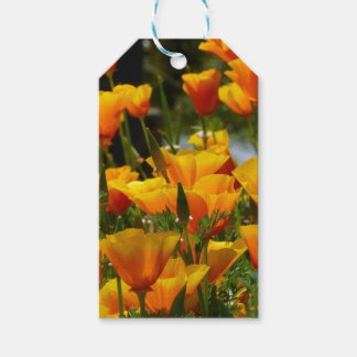 Orange California Poppies_3.1 Gift Tags